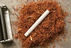 反对烟草背景的一根滚动的香烟  库存图片