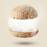 反对白色背景的汉堡 免版税图库摄影