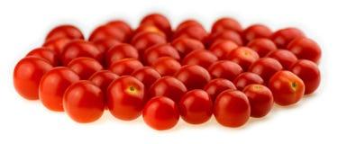 反对白色背景的自然,水多的西红柿 库存图片