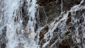反对石墙背景的瀑布 库存图片