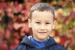 反对秋天的年轻男孩在公园生叶 库存图片