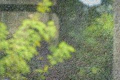 反对绿色的一个破裂和残破的玻璃窗 库存照片