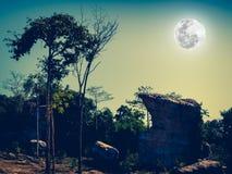 反对美丽的天空和满月的冰砾在平静的natur 免版税库存照片