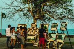 反对美丽的自然热带土地的室外被暴露的绘画 图库摄影