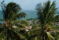 反对蓝天和海的棕榈树 图库摄影