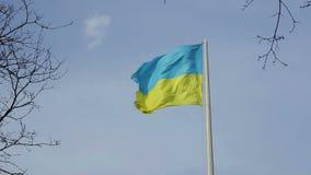 反对蓝天的乌克兰国旗 股票视频