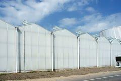 反对蓝天的现代高温室 免版税图库摄影