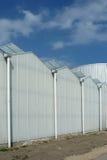反对蓝天的现代高温室 免版税库存图片
