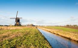 反对蓝天的荷兰开拓地磨房 免版税库存图片