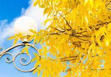 反对蓝天的街灯和黄色叶子 免版税图库摄影