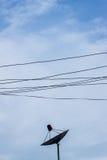 反对蓝天的黑卫星盘 免版税图库摄影