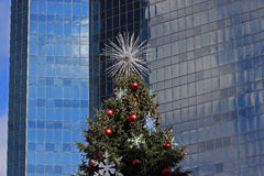 反对蓝色摩天大楼背景的圣诞树 库存照片