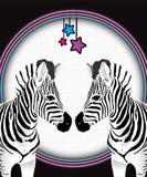 反对被察觉的霓虹影片背景的两匹面对的斑马 免版税库存照片