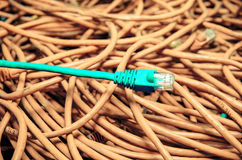 反对被缠结的背景的蓝色以太网电缆 库存照片
