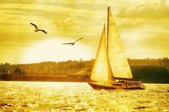 反对设置金黄太阳和飞行海鸥的航行游艇 库存照片