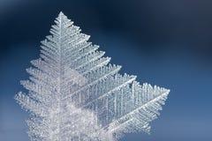 反对软的蓝色背景的冰晶宏指令 每雪花 库存图片