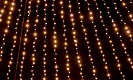反对黑夜空的圣诞节诗歌选 免版税库存照片