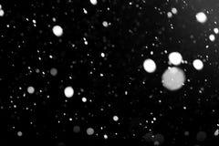 反对黑天空的白色落的雪 免版税库存图片