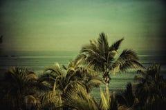 反对水色色的天空的棕榈树 免版税图库摄影