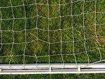 反对绿草的白色网 免版税库存照片
