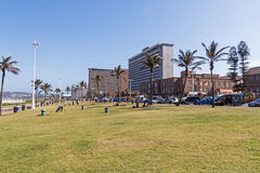 反对Goldem英里城市海滩前面地平线的草边缘 免版税库存照片