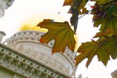 反对Golden Dome的槭树叶子 免版税库存图片