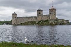 反对Olavinlinna城堡,萨翁林纳,芬兰的海鸥 图库摄影