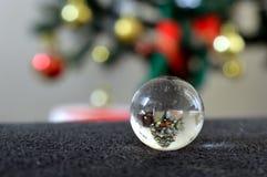 反射一棵被倒置的圣诞树的一个小的玻璃球的特写镜头 免版税库存照片