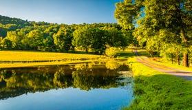 反射在一个池塘的车道和树在雪伦多亚河谷 库存照片