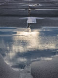 反射在一个水坑的云彩在路秋天多云天在贝尔格莱德 免版税图库摄影