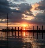 反射在与鸟飞行和船坞反射的海滩的桃红色日出 库存图片
