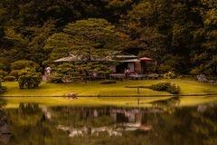 反射在有绿色口气的一个湖在有草和一点咖啡店的一个森林里 图库摄影
