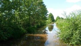 反射在泥泞的水中在一好日子 免版税图库摄影