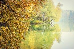 反射在湖的秋天树 免版税图库摄影