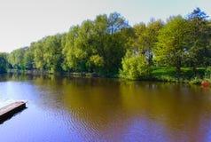 反射在湖的绿色树 免版税库存照片