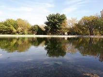 反射在湖 图库摄影