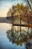 反射在湖水的柳树。平静的秋天场面 免版税库存图片