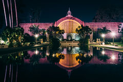 反射在百合池塘的植物的大厦 免版税图库摄影