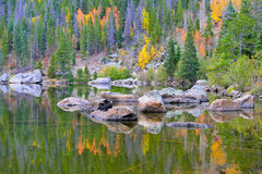 反射在秋天的高山湖的黄色和红色白杨木 免版税库存照片