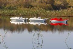 反射在芦苇和白色和红色筏中水  库存图片