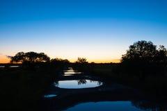 反射在许多水坑的晚上天空 库存照片