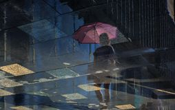反射在雨以后的水中 免版税库存照片