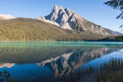 反射在鲜绿色湖 免版税图库摄影