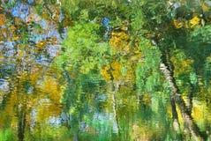 反射在水中的抽象五颜六色的秋天叶子 免版税库存图片