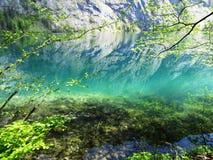 反射在绿松石湖 免版税图库摄影