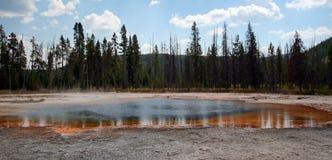 反射在黑沙子喷泉水池的鲜绿色水池温泉的树在黄石国家公园美国 免版税图库摄影