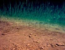反射在Avalanche湖,冰川国家公园,蒙大拿 免版税库存图片