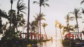 反射太阳和棕榈树的游泳池 免版税库存图片