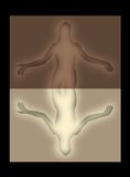 反射性发光的妇女 库存图片