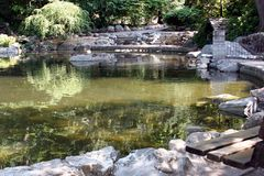 反射性的池 免版税库存图片